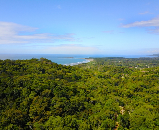 dulce pacifico development real estate for sale uvita