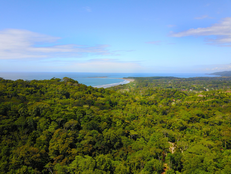dulce pacifico development real estate for sale uvita